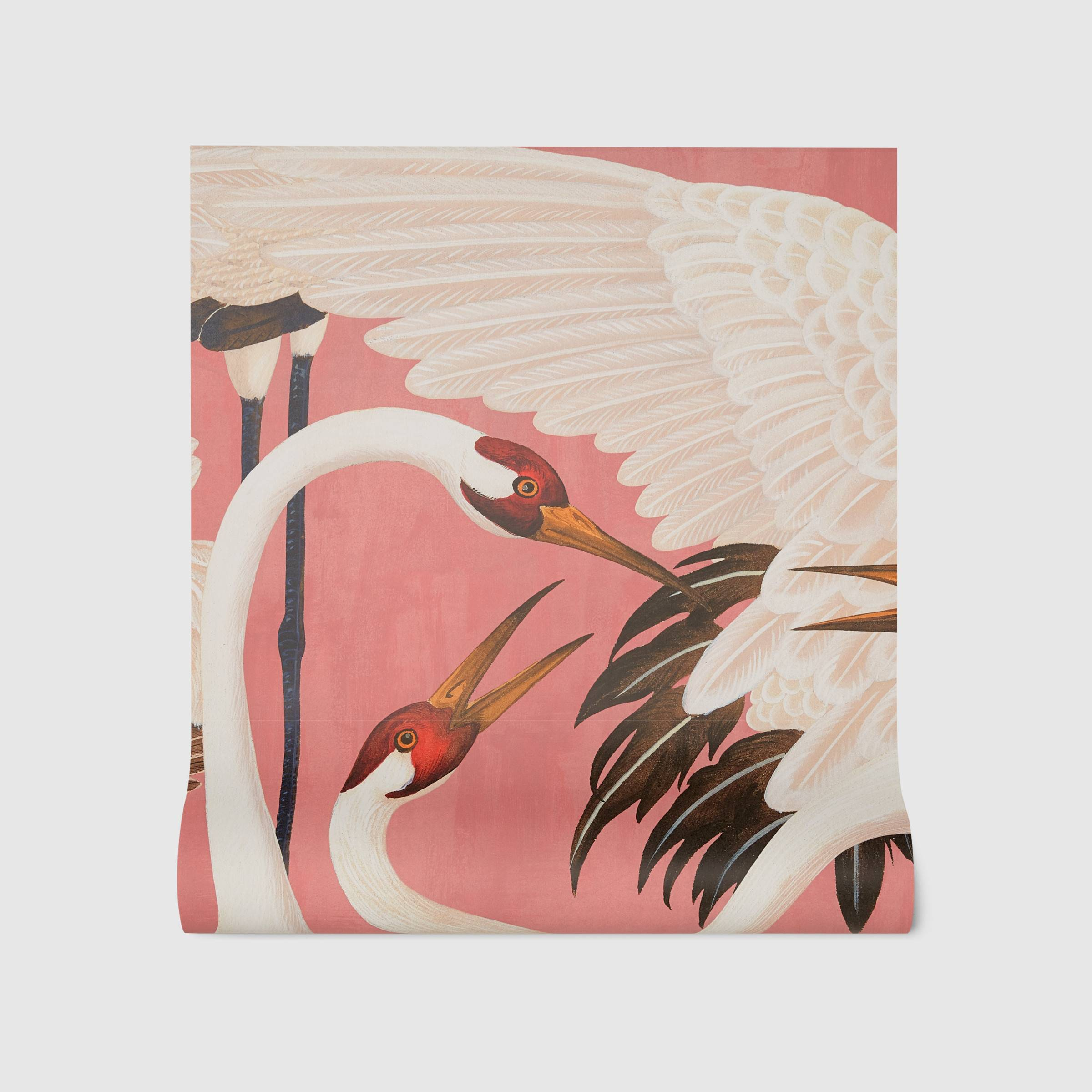 Gucci Heron wallpaper pink birds salmon white tropical #designninja